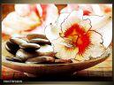 Moderný obraz o rozmere 100x70 cm s motívom kvetov