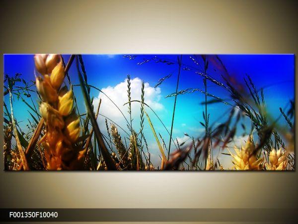 Moderný obraz o rozmere 100x40 cm s motívom krajiny