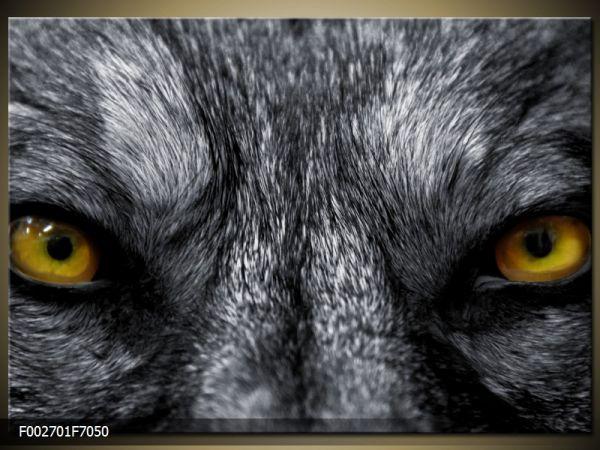 Moderný obraz o rozmere 70x50 cm s motívom zvieraťa