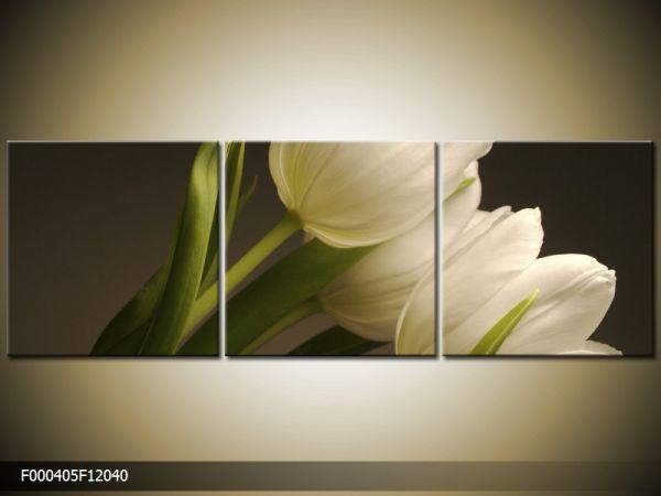 Trojdielna sada moderných obrazov o rozmere 120x40 cm s motívom kvetov